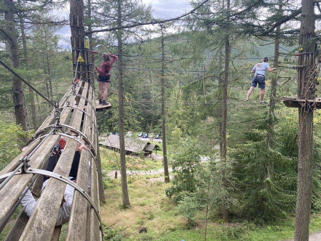 Tree top challenge go ape